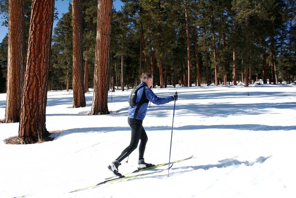 A person cross-country skiing through History Grove | Photo by: NPS